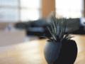 Détails : Louer appartement à casablanca