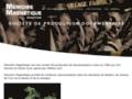 Capture du site http://www.memoiremagnetique.fr
