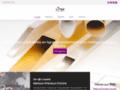 metauxprecieuxfranceindustrie.com: fil platine
