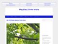site http://www.meublesoliviermaire.com