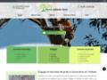 Détails : Taille des arbres à Yvelines - Miraux Rodolphe