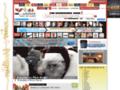 Détails : Agence Evènementielle Artistique et Commerciale