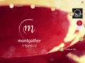 Montgolfier Maine et Loire - Daumeray
