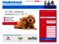 Détails : assurance pour chien