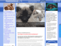 mutuelle chiens sur www.mutuellechienchat.com