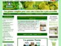 """Détails : Produits cosmétiques et  compléments alimentaires pour l""""amour de votre beauté et Bien-être  - Nasim Biocosmetic"""