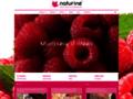 Détails : Naturine :: Agence conseil en communication et publicité Lyon