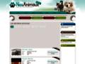 Détails : Nos Animaux .com : Animaux Perdus et Trouvés