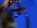 www.oiseau-libre.net/