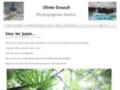 Site #6611 : Photographies nature en Haute-Marne et ailleurs