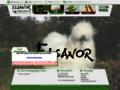 Elevage de poule d'ornement Negre soie, eleveur de volaille de race ELSANOR