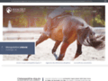 Détails : Ostéopathe équin dans le Pas-de-Calais