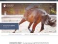 Détails : Anne DELY, ostéopathe équin à Boulogne-sur-Mer dans le Pas-de-Calais