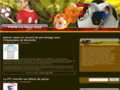 Détails : Paris en ligne foot