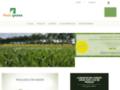 Détails : Vente en ligne de gazon en rouleaux