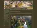 Capture du site http://www.pechemouche-eclimont.fr