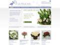 livraison fleurs paris sur www.pelicanfleurs.com