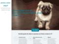 Détails : Pension canine sur Paris