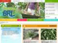 BRL, Pépinière du Bas Rhone, arbres, plantes, arbustes, oliviers, conifères, palmiers, gard
