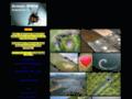 Site #2167 : Photographie aérienne en paramoteur