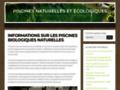 Détails : Autoconstruction piscine naturelle