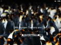 Planeta Verde - Tierbeobachtungsreisen