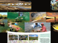 fly sur www.planetflyfishing.com