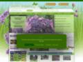 Plantes Shopping - Boutique de plantes d'intérieurs et d'expérieurs