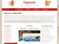 Détails : PlugBoard Officiel
