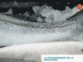 Détails : Poissonnerie de la Sardagne - Cluses