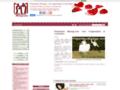 Préparation mariage : tout pour le mariage