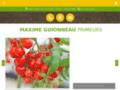 Détails : MAXIME GUIONNEAU PRIMEURS