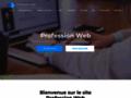 Détails : Informations sur les professionnels du web