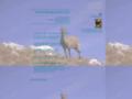 La randonnee avec une guide en montagne