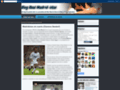Blog Real Madrid-istas