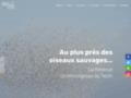 Vignette_http://www.reserve-ornithologique-du-teich.com/en/