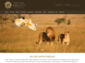 Photographic African Safari Adventures