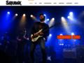 Détails : saturax guitare