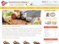 Détails : Saucisson sec d'Auvergne au détail ou en lot