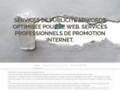 Services de publicité optimisée pour le web. Services professionnels de promotion internet.