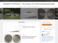 Détails : Réussir sur le plan financier grâce à un site