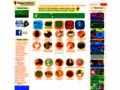 Preschool and Kindergarten Animals -  games, movies and activities