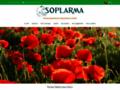 Détails : plantes medicinales maroc