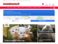 Sosanimaux.fr - Annonces animaux