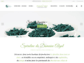 Détails : Spiruline artisanale en brindilles
