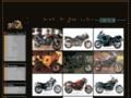 Détails : Triumph T3 Passion