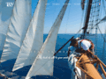Détails : Team Yachting : agence évènementielle nautique