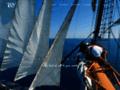Détails : Team Building et incentive nautique