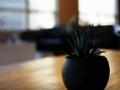 La Terre des Rois - Jeu en ligne - Simulation éco