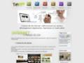Création de site Internet - Saint-Etienne - Loire